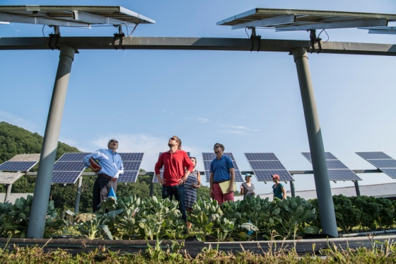 Solar Energy Investment Activity Booms in 2021